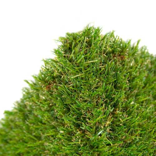 edge of grass